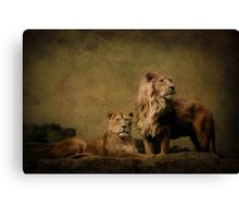 Pride and perfection Canvas Print