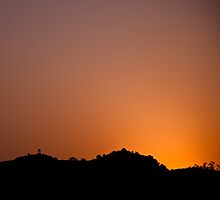 Sunrise - Ranthambore National Park by Andrew To