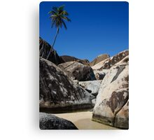 Boulders and Palm Trees Canvas Print