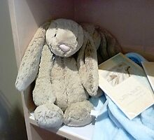 *Floppy long Eared Rabbit - Daylesford Convent/Art Gallery* by EdsMum