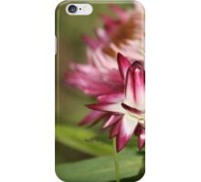 Life Is A Process iPhone Case/Skin