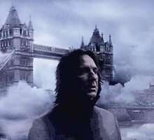 The British Halfblood Prince by scatharis