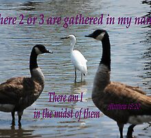 Matthew 18:20 by Bob Sample