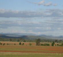 Breeza Plain, March 1010 by Suzie Shaw