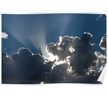 Morning Rays... Poster