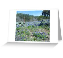 Bluebonnets in Hill Country Greeting Card