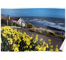 Springtime At The Seaside ~ Lyme Regis Poster