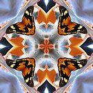 Butterfly Dreams by Matthew Sims