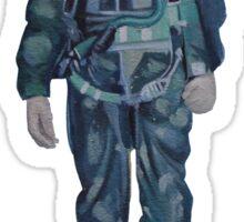 Indian Air Force Pilot Mural Sticker