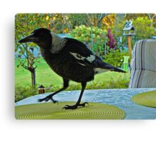 Table Manners Canvas Print