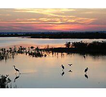 Sunset 3 Merrit Island Wildlife Refuge Photographic Print