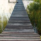 Long Dock by Laney Lane
