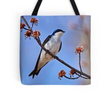 Tree Swallow on Red Maple Branch - Ottawa Ontario Tote Bag