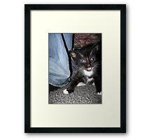 Scared! Framed Print