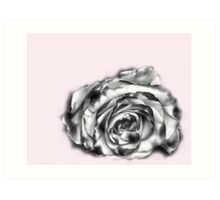 I was dreaming of a rose Art Print