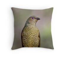 Ptilonorhynchus violaceus - Female Satin Bowerbird Throw Pillow
