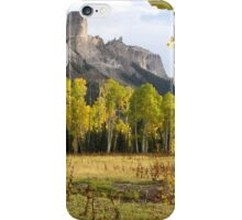 Deb's Meadow iPhone Case/Skin