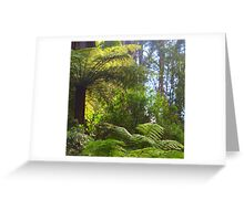 A ferny glade awaits... Greeting Card