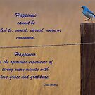 Happiness by Barb Miller