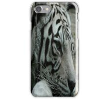 Ride the tiger..You can see his stripes but you know he's clean..you can feel his heart but you know he's mean..Some light can never be seen iPhone Case/Skin