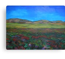 A view from afar... Canvas Print