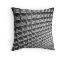 The Wall at Bowen Street Throw Pillow
