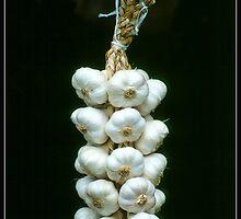 Garlic by ofer2000