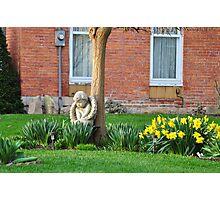 Flower garden guardian angel Photographic Print