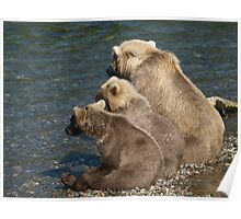 Three Bears waiting Poster