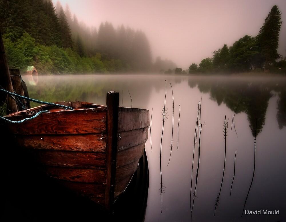 Just add birdsong... Loch Ard , Trossachs by David Mould
