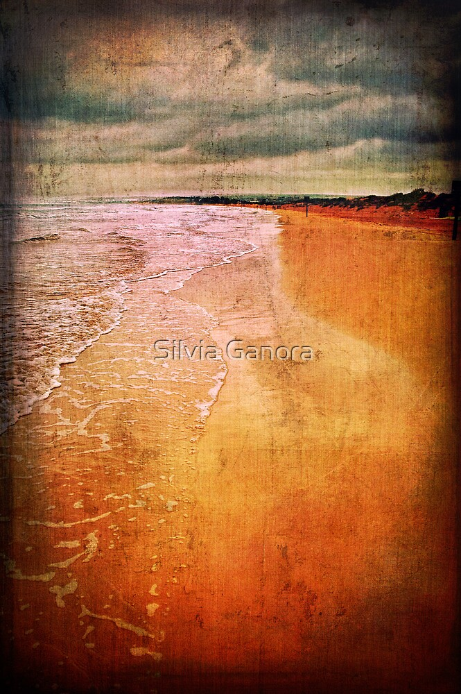 The beach by Silvia Ganora