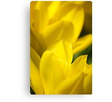 Yellow Flower Abstract Canvas Print