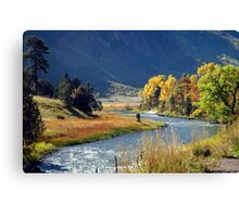 Chrystal River Canvas Print