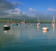 Tobermory harbour,Scotland by leksele