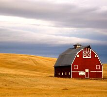 Barn on the Palouse by kimmer19