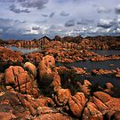 Cochise Point, The Granite Dells by Wayne King