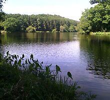 Fishing Lake  by mike421