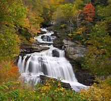 Blue Ridge Waterfalls by Dave Allen