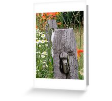 Tiger lilies on rail fence Greeting Card