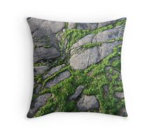 Weed On The Rocks Throw Pillow