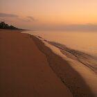 Forest Beach at dawn by thebeachdweller