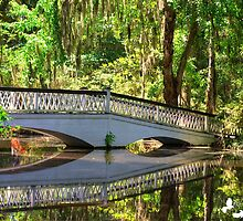 The Bridge and Reflection by Photography by TJ Baccari