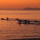 Early morning surf club - Palm Beach Queensland by thebeachdweller