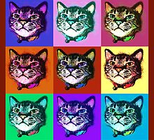 Cats Pop Art by Ginny Luttrell
