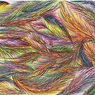 Birdless Wonder by Joanne Jackson