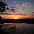 Mirror of dawn by Lauren Banks