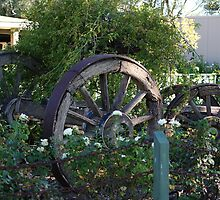 Old Wooden Dray in Garden by pitspics