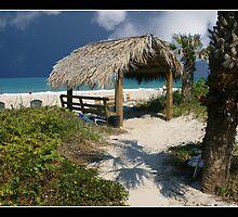 Beach scene by Bigart32