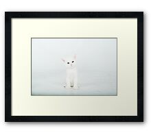 Ahem.....where am I suppose to go ??? Framed Print