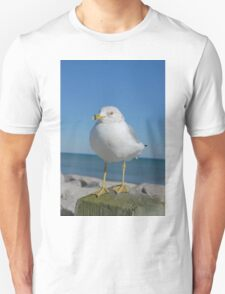 Sea Gull Posing Unisex T-Shirt
